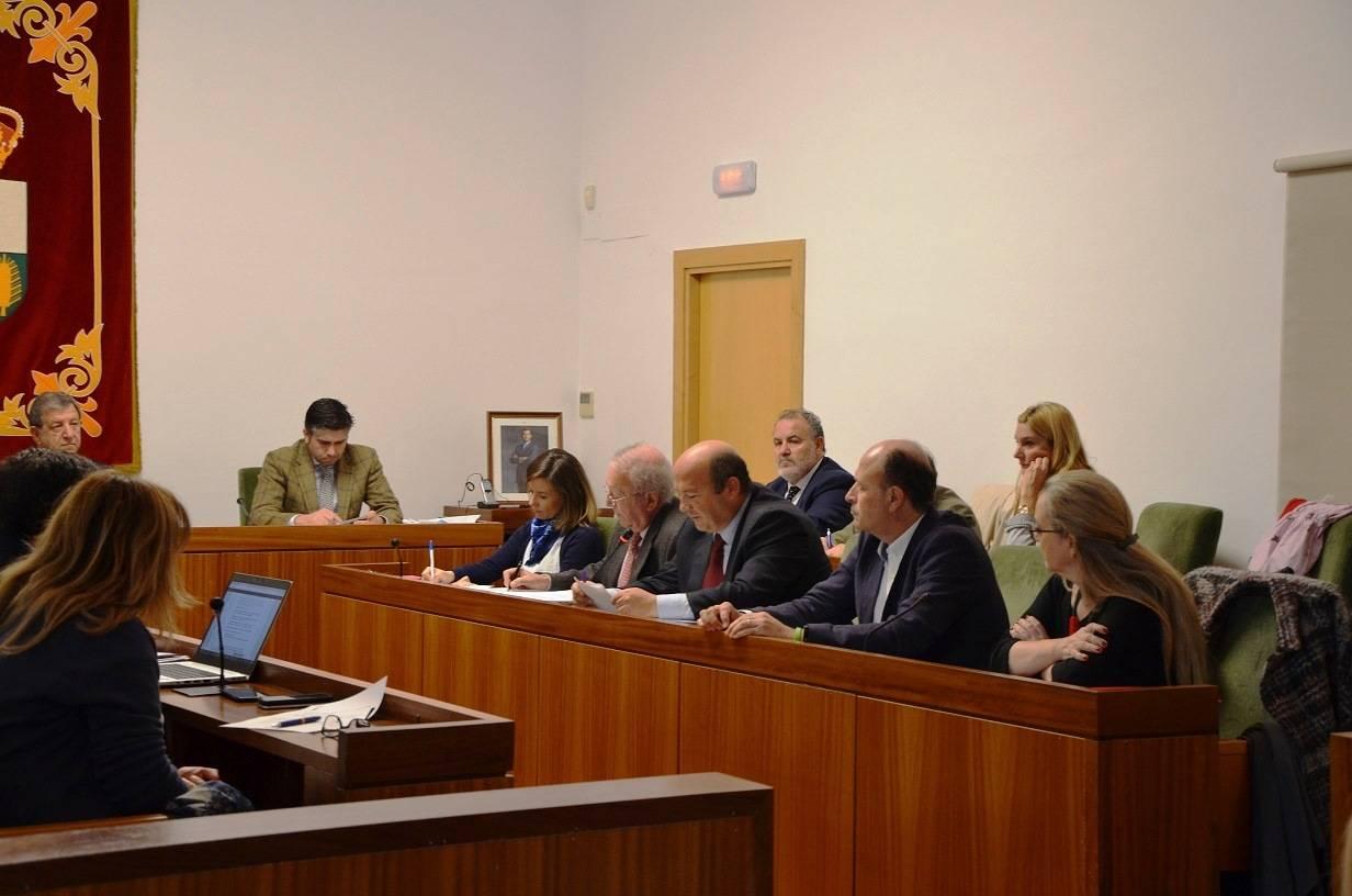 Imagen del Pleno.