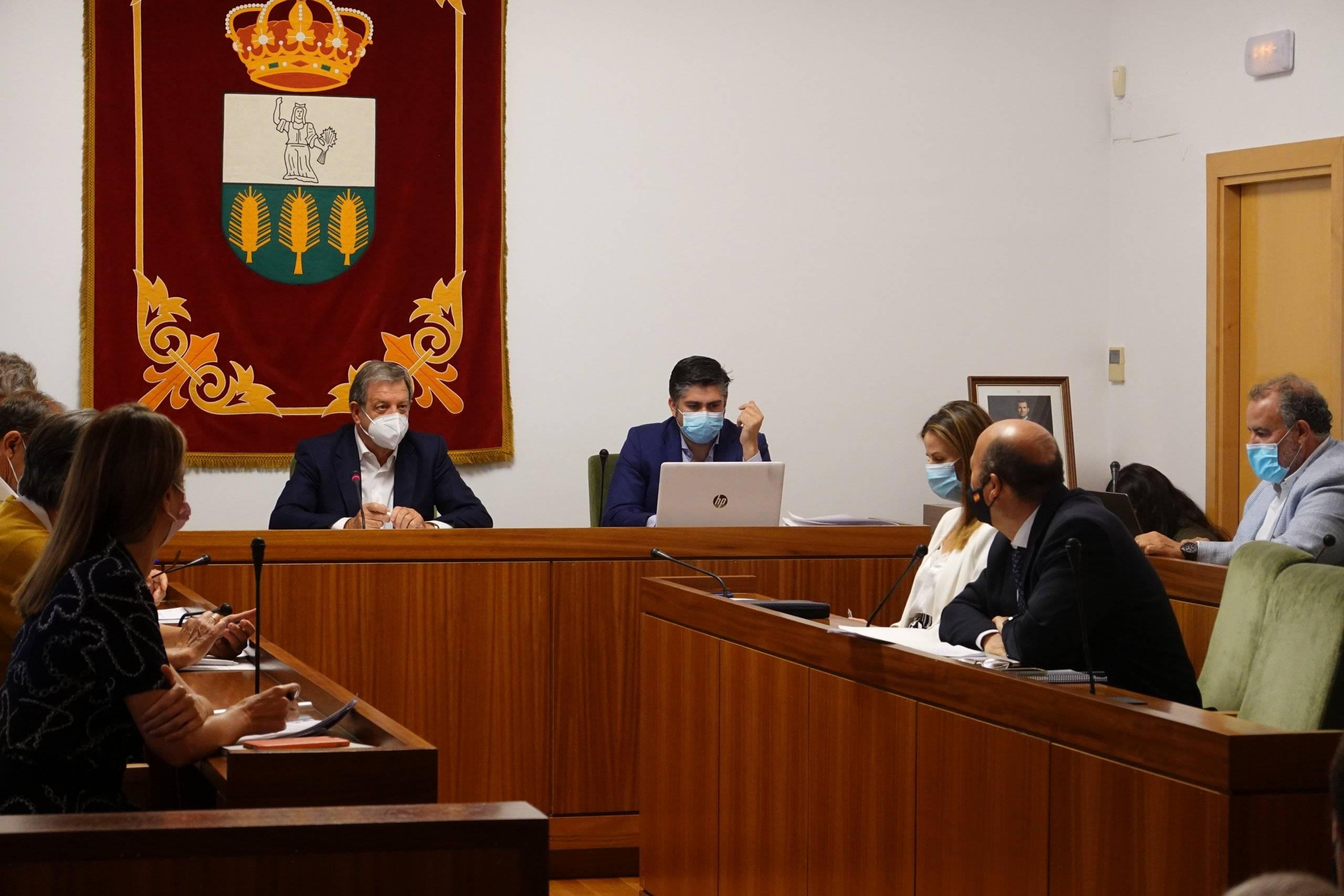 El alcalde, Luis Partida, presidiendo el pleno del Ayuntamiento.