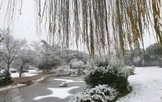 Imagen del parque de La Baltasara nevado.