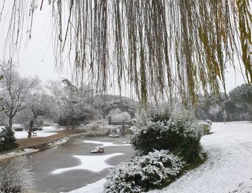 Activado el Plan de Inclemencias Invernales en Villanueva de la Cañada