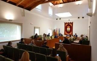Sesión del Pleno.
